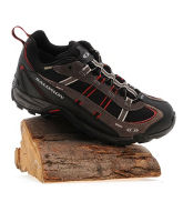 Men's Booster GTX Hiking Shoes